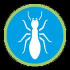 Insekten Allgemein
