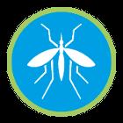 Fliegen / Mücken